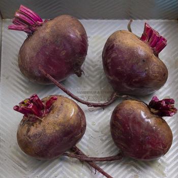 beets
