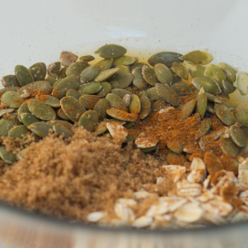 Pumpkin seeds, rolled oats, maple syrup, melted margarine, cinnamon, salt, and brown sugar in a bowl.